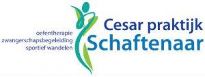Multidisciplinaire samenwerking met Schaftenaar